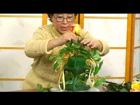 Cam Hoa - Nho To Tam Su