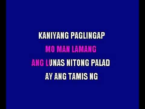 Adapt  La Golondrina   Pipit Puso Filipino Karaoke