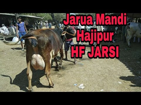 Jarua Mandi (part2)Hajipur Patna Bihar 18 March 2018