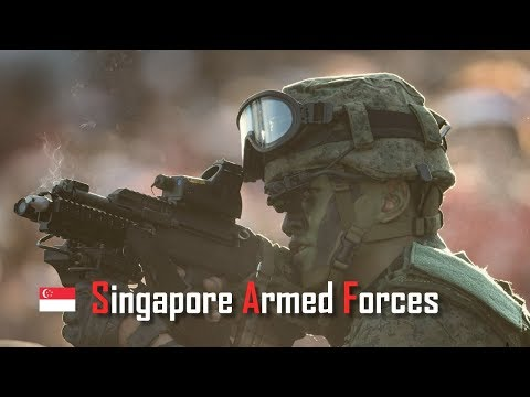 "Republic of Singapore Armed Forces 2019 │ 新加坡武裝部隊 │ ""Born In Singapore, Strong As Hell"""