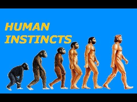 Basic Human instincts- ADHD World
