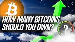 How Many Bitcoin Should You Be HODLING??