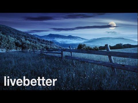 Sleep and Relaxation Nature Sounds: Crickets Summer Night - Sleep Music