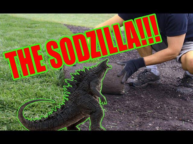 The Sodzilla!!