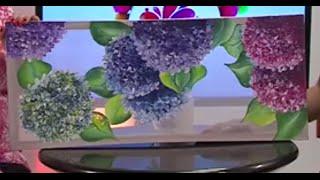Como Pintar un Cuadro en Velo Suizo Chifon y Pinturas para Tela - Hogar Tv  por Juan Gonzalo Angel