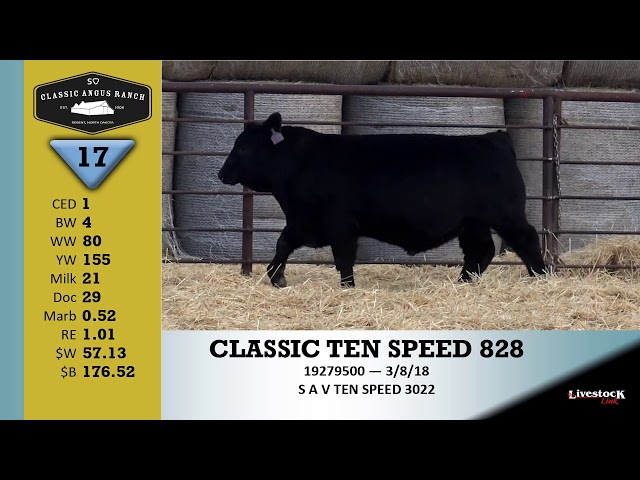 Classic Angus Ranch Lot 17