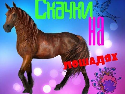 |Ненавижу....игру скачки на лошадях|