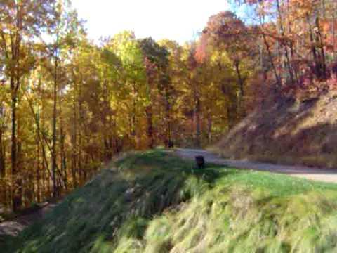 Monday Bears, Asheville, North Carolina