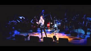 Donna Burke - Journey