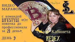 Краткий Обзор Кабинета Redex | Видео Марафон День 10