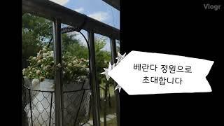정원VLOG | 주말브이로그 | 베란다정원으로 초대합니…