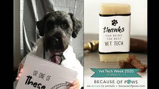 Vet Tech Gifts For National Veterinary Technician Week 2020 Youtube