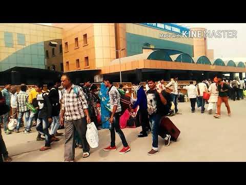Zindagi Aa Raha ONENESS DANCE & MUSIC ACADEMY