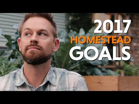 2017 Goals for our Homestead, Passive Income Streams, and Homeschooling