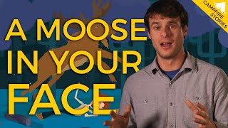 Waking Up With a Moose in Your Face | National Geographic