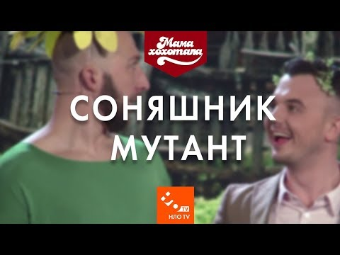 Соняшник мутант  Шоу Мамахохотала   НЛО TV