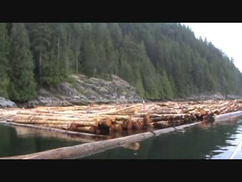 Dennis Hayes Logging - America Trip - 'Logging Boo...
