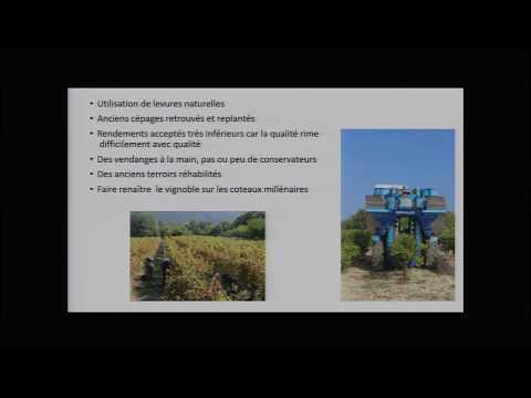 L'agriculture biologique, petite chronique d'une divergence culturelle