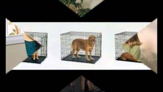 Dog Kennels: Midwest Life Stages Double-door Folding Metal Dog Crate