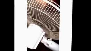 singing in the fan from ice jj fish to beyonce