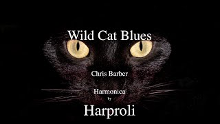 "Wild Cat Blues"" Cats, Cats, Cats  Harmonica by Harproli"