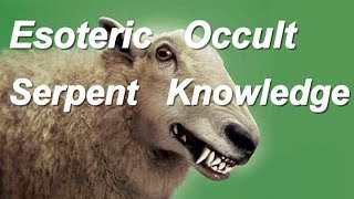 Should Christians Study Esoteric Occult Serpent Knowledge? The Bible's answer
