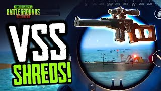 VSS SHREDS! Slow & Silent. PUBG Mobile