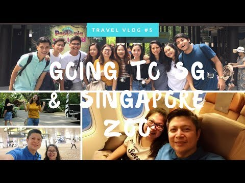 Travel Vlog #5 : Going to SG & Singapore Zoo