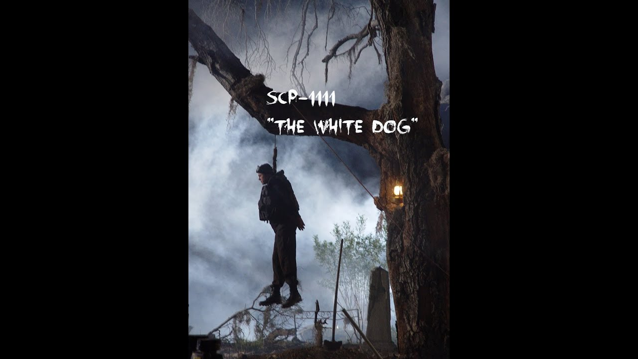 "SCP Readings: SCP-1111 ""The White Dog"" - YouTube"