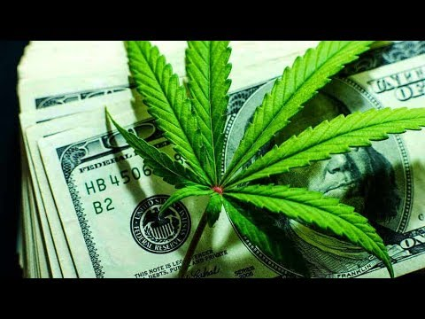 Marijuana stocks: What's the best broker to use? Robinhood? // Cannabis hemp pot weed stocks to buy