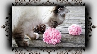 DIY 😻 Igel Ball für Katzen und Hunde | Hedgehog Ball for cat & dogs