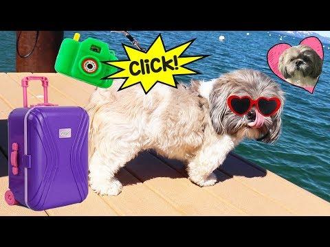 Perrito Hamilton de vacaciones en el lago | Pretend play para niñas y niños