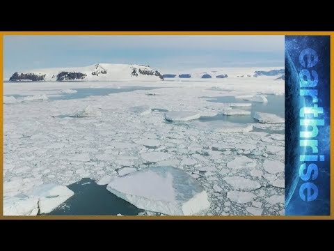 🌊 Antarctic sanctuary: The Weddell Sea quest   earthrise