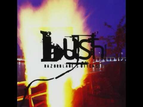 Bush - Greedy Fly {HQ}
