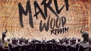 jaiga tc these girls marli wood riddim 2017 trinidad soca