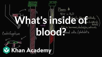 What's inside of blood? | Lab values and concentrations | Health & Medicine | Khan Academy