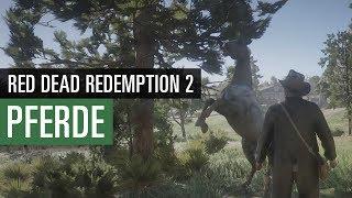 Red Dead Redemption 2 PFERDE | Der ultimative Pferdeguide Video
