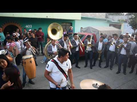 BANDA REYNA DE MEXICO| EL CABLE