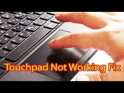 how to fix your trackpad