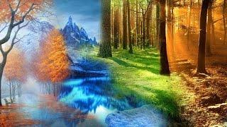 Времена года. Детям про зиму, весну, лето и осень. Сезоны года.
