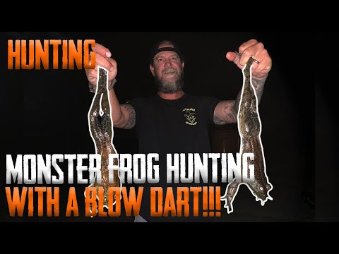 Monster Frog Hunting With A Blow Dart (Snakes Everywhere...)