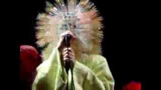 Björk - Hunter
