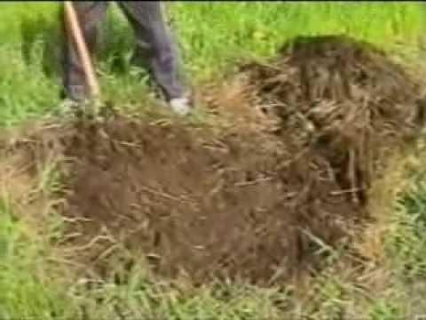 """Счастливцев. """"Землетворение. Обработка почвы без техники"""""""