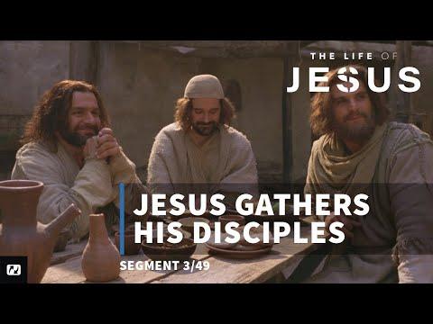 Jesus Gathers Disciples | English | The Life Of Jesus | 3 Of 49