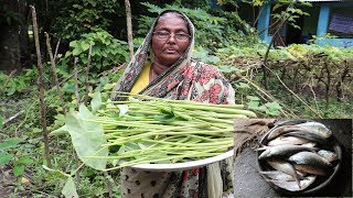 Healthy Foods - Cooking Hilsa Fish And Green Taro Leaves in my Village / Cooking Green Taro Stem
