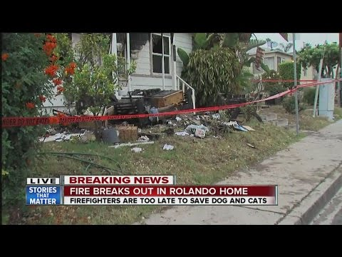 Pets killed as fire engulfs Rolando home