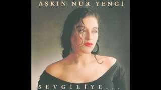 Gambar cover Aşkın Nur Yengi - Başka Bir Şey (1990)