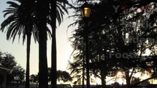 Sunset w/ Large Park Gazebo & Palm Tree Silhouette and Grass in Foreground | HD Stock Video Footage