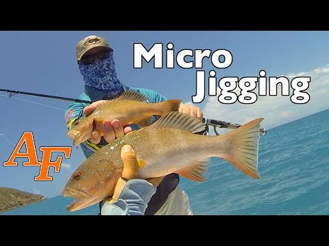 Micro Jigging and Slow Jigging with Andrew Whitsunday Islands Andy's Reef Fishing Video EP.281