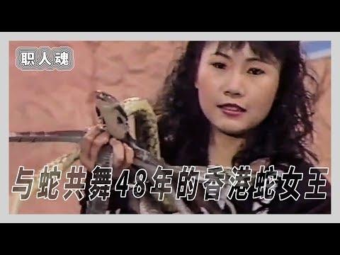 """【箭厂视频】与蛇共舞48年,""""香港蛇女王""""的光辉岁月"""